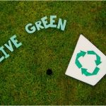 Going Green: Five Things You Can Do To Be More Bio Friendly
