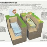 Green Burial: Choose to be Buried the Natural Way