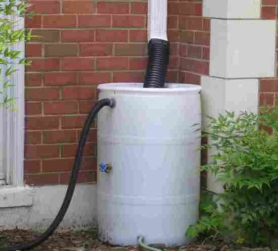rain barrels 1