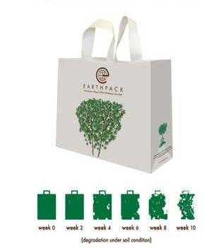 green bags 1