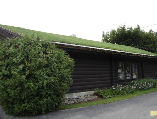 green roofing 2  sc 1 st  The New Ecologist & Is Sustainable Roofing The Way To Make Your Roof Green? | The New ... memphite.com