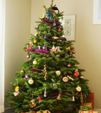 http://www.thenewecologist.com/wp-content/uploads/2010/11/christmas-tree.jpg