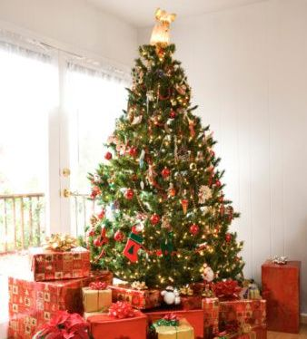 Christmas Decoration – Keep It Eco Friendly The New Ecologist - Eco Friendly Christmas Tree