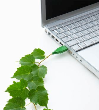 green computer tips