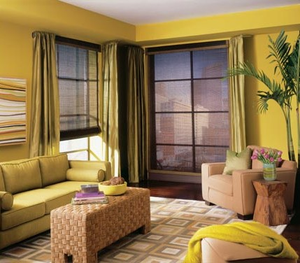 Right Window Treatments