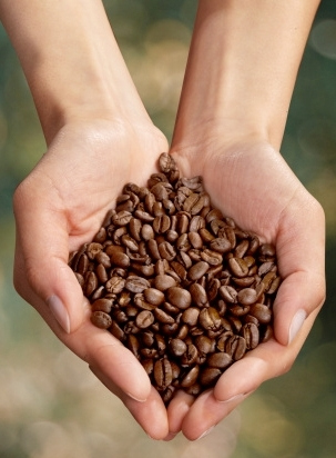 Tips to Buy Sustainable Coffee