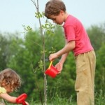 2013 and The Eco Friendly Side of Modern Parenting