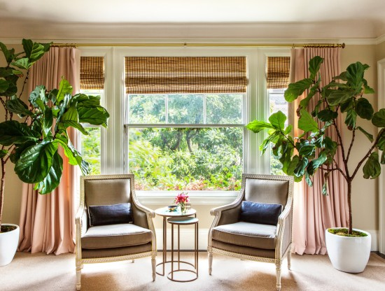 window tips for green homes