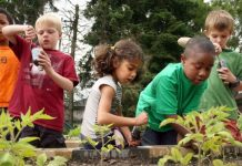 know how community gardening helps in bringing the society together