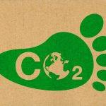 5 Ways You Can Contribute Toward Bringing Down Carbon