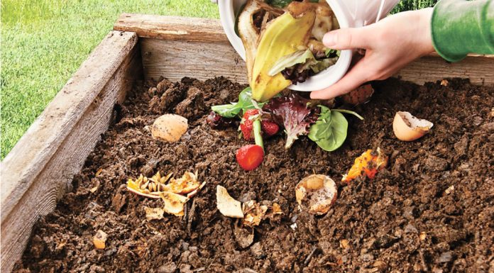 5 Ways You Can Make Your Own Compost Pit