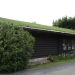 green roofing 2