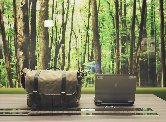 The greener the office, the greater your productivity
