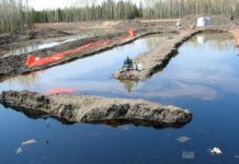 know about bioremediation