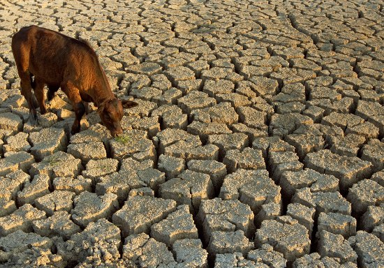solutions to deal with droughts for farmers