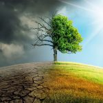 5 Incredible Facts about Global Warming